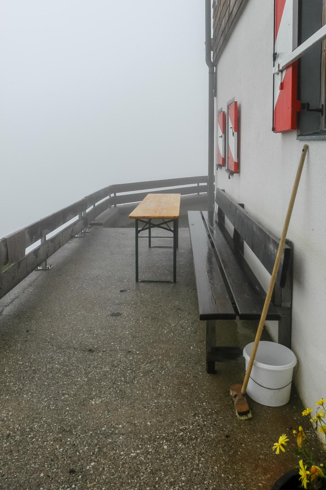 Am Morgen sind die Nebel grau. Der Regen lässt unseren Plan ins Wasser fallen. Der Habicht bleibt heut alleingelassen
